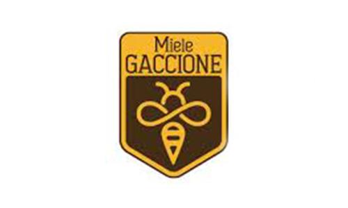 GACCIONE